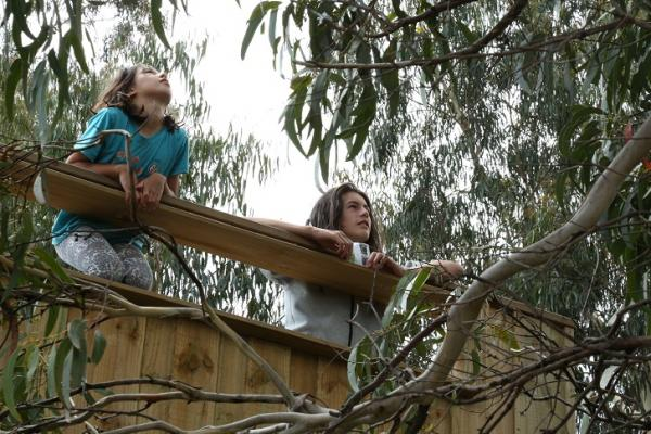 Inala's Forty-spotted Pardalote viewing platform