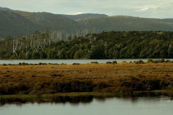 Tasmanian Highlands, Cradle Mountain, Richard White