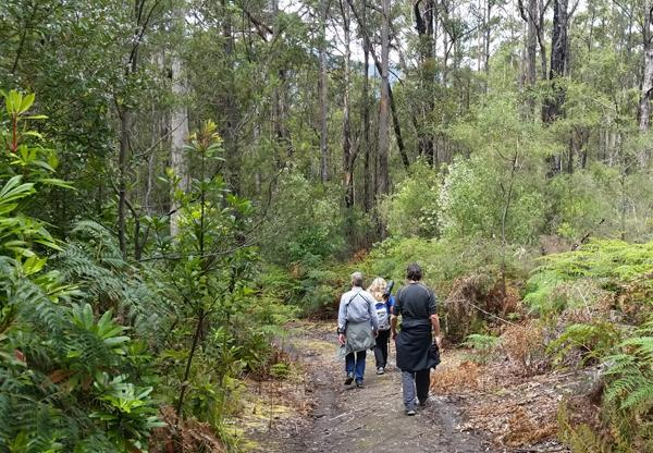 Tonia with Ben Callison and David Hartwell, hiking the Inala trails.