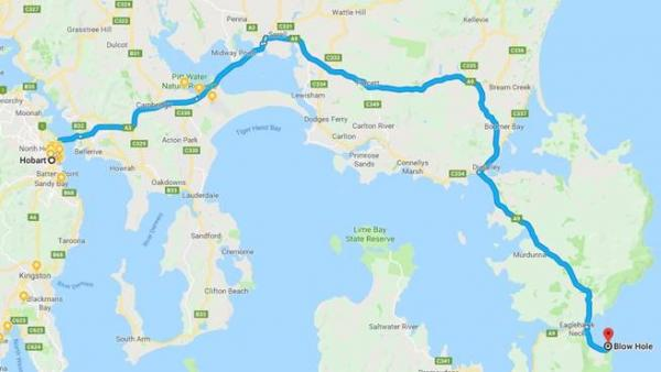 Hobart to Eaglehawk Neck - Inala Nature Tours - Pelagic