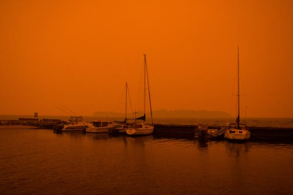 Bruny Fires 2019 - Brad Moriarty