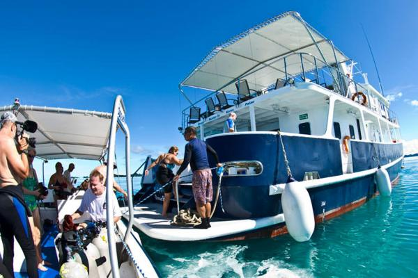 Tender + Ocean Hunter 3 - Palau
