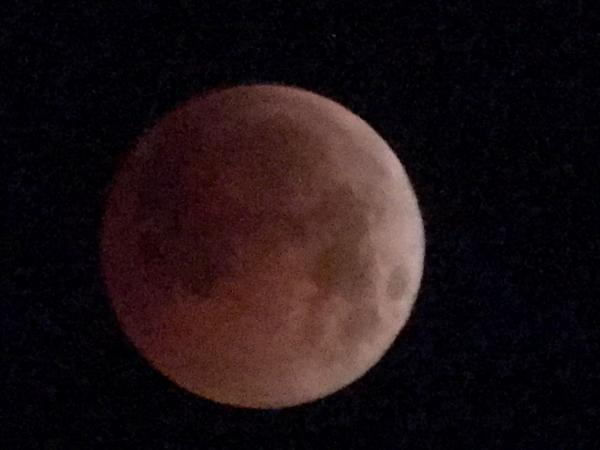 Blood Moon - Tonia Cochran - Inala Nature Tours