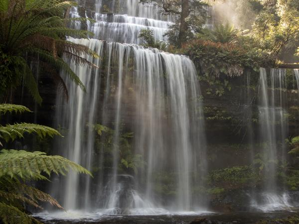 Inala Nature Tours - Ken & Mary Campbell - Russell Falls Mt Field