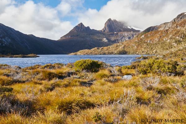 Cradle Mountain - Cindy Marple - Inala Nature Tours