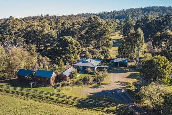 Inala Cottage - Inala Nature Tours - Inala Country Accommodation - Brad Moriarty - Pademelon Creative