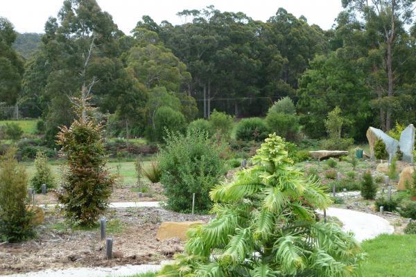 Gondwana Garden View - Inala Nature Tours - Bruny Island